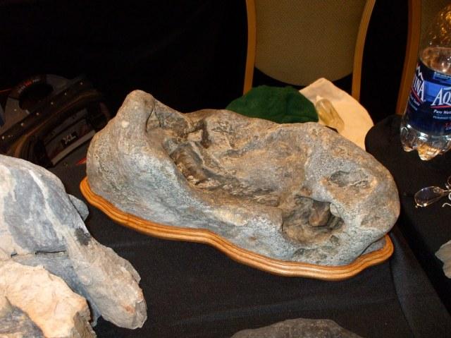 Amador County Stone - Large